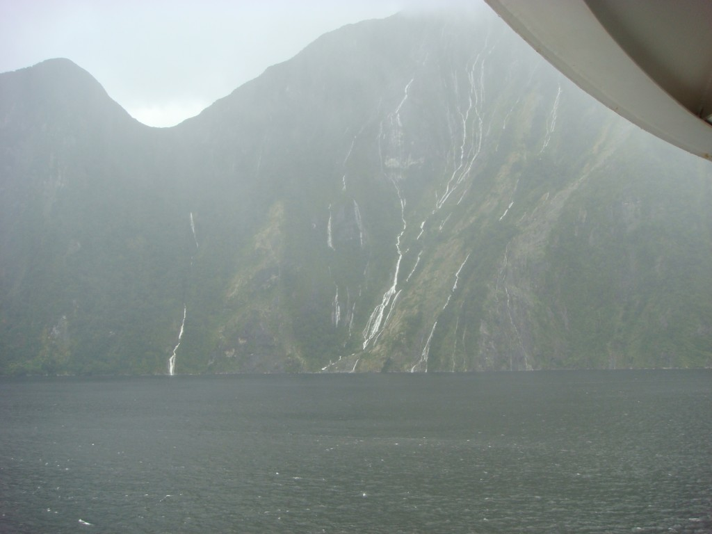 Early morning cruising into Milford Sound, NZ