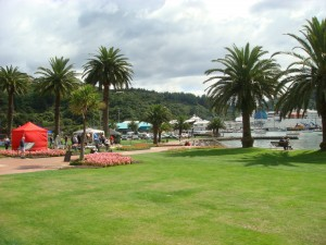 Picton park adjacent the waterfront,  NZ 2009