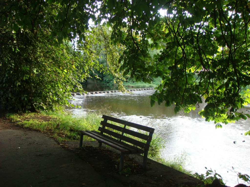 River Wansbeck, Morpeth.  2011
