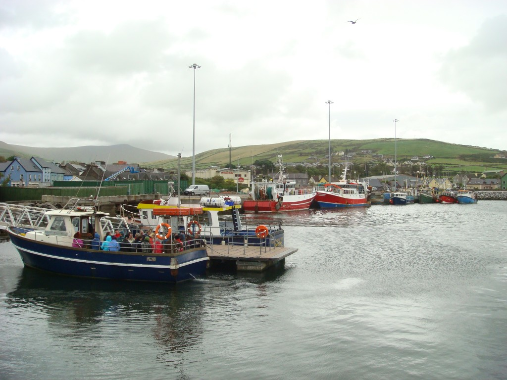 The Harbour, Dingle, Ireland.  2011