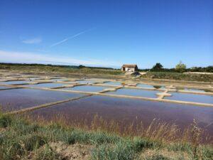 The salt farms of the Guerande, Liore, France.  2014