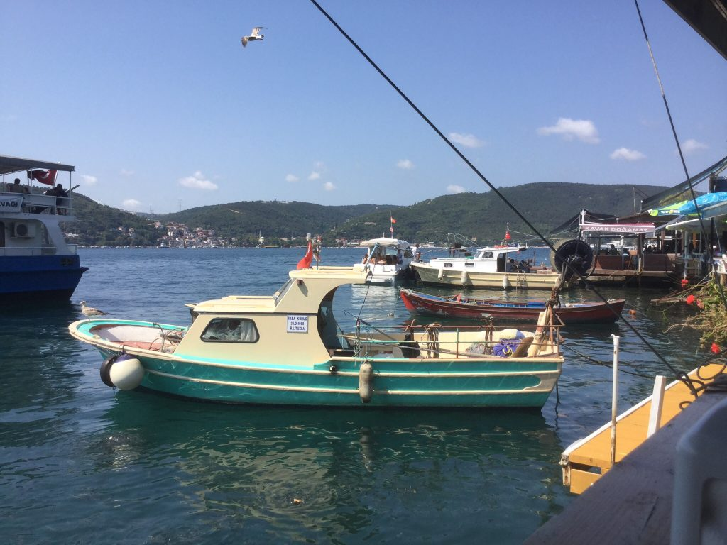 We lunch at Anadolu Kavagi a little village on the Asian side of the Bosphorus.